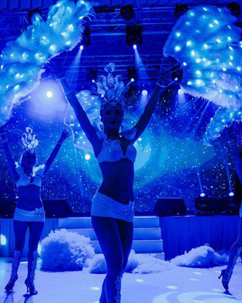 световое шоу спб | Exotic Art