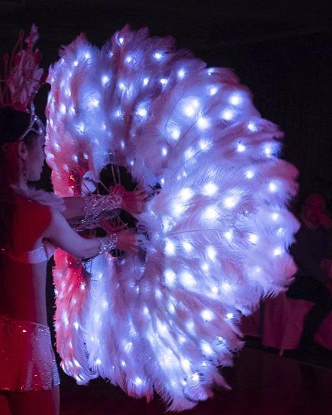 шоу на свадьбу спб | Exotic Art